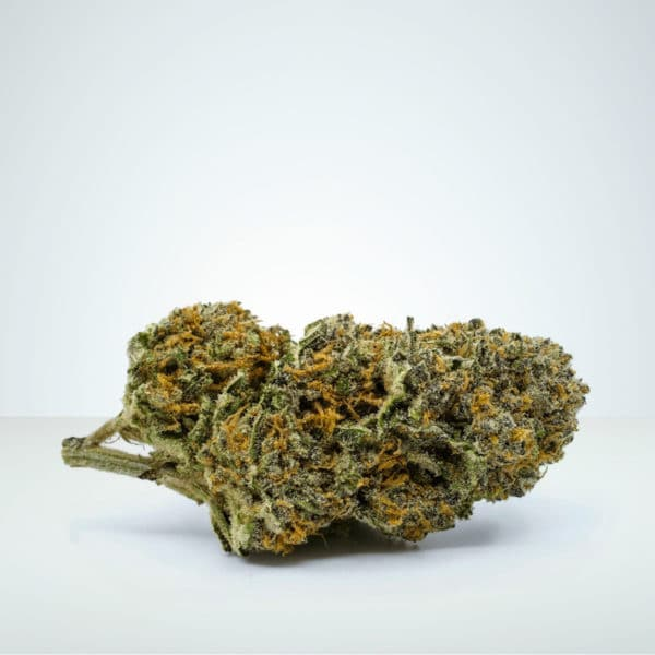 Super Silver Haze legal weed at herbmed.
