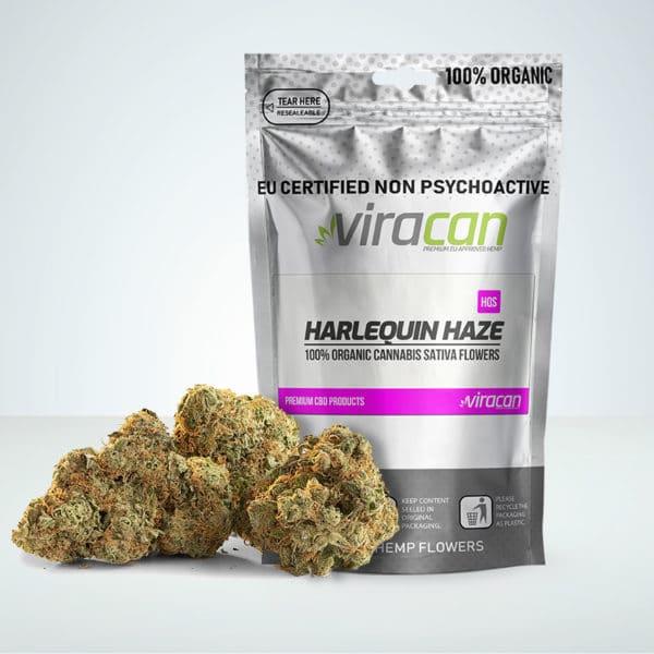 Harlequin Haze CBD buds at Herbmed