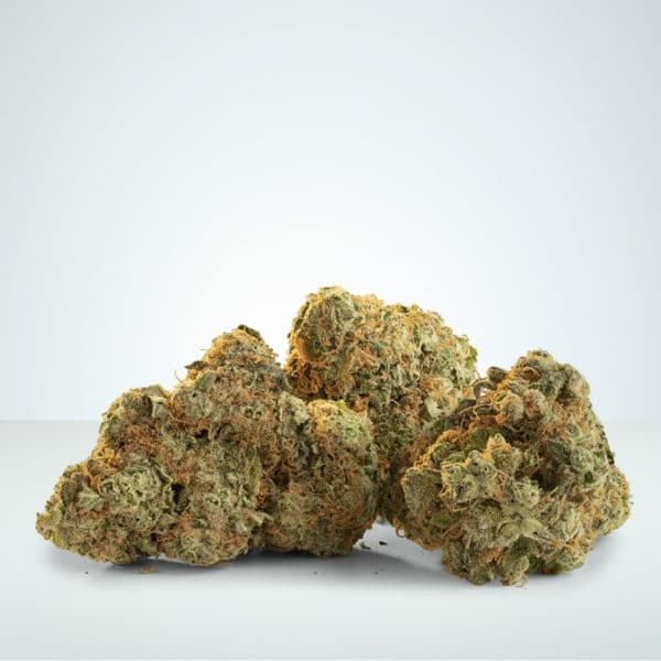 Legal weed CBD buds at Herbmed